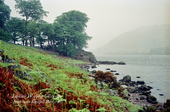 Looking W along Ullswater from near Kailpot Bay (Scan from May 1993)