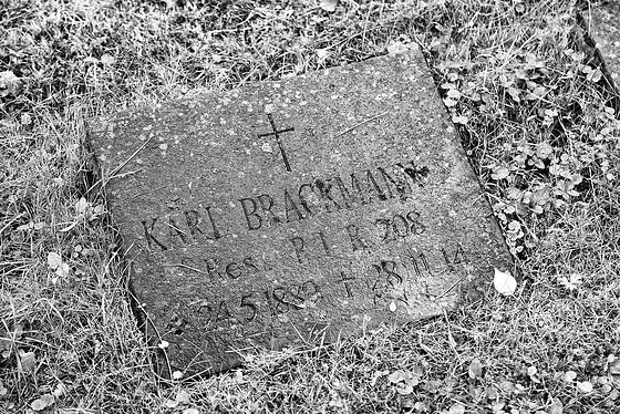 2014 06 28 bonn nordfriedhof 04