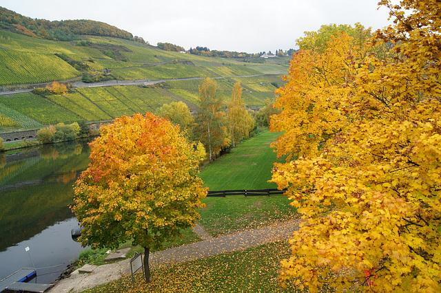 Vallée de la Moselle allemagne