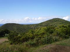 Mount Brazil.