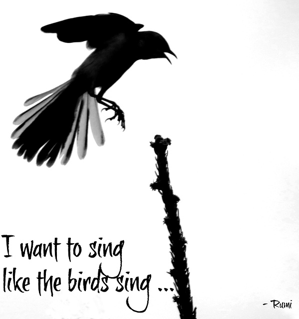 - sing