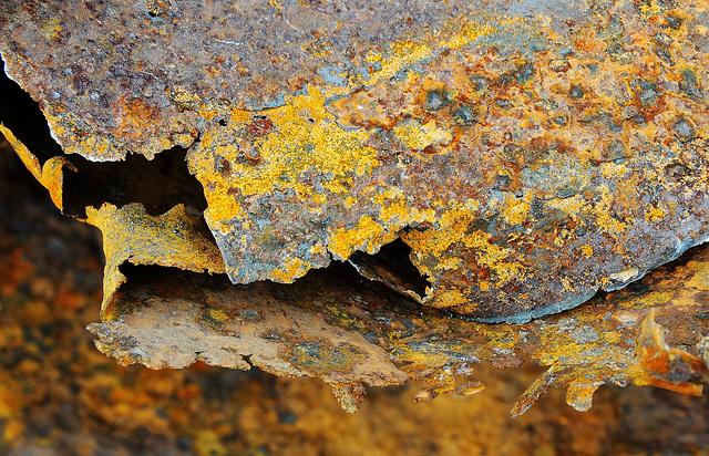 Rusty Stuff at The Scrapyard 3