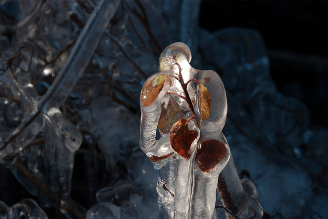 Bio man de glace