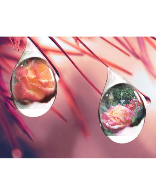 Composition avec WaterDropDualPhotoFrame
