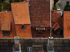 Quedlinburger Dächer- Roofs