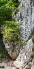 Climbing in Admont (3)