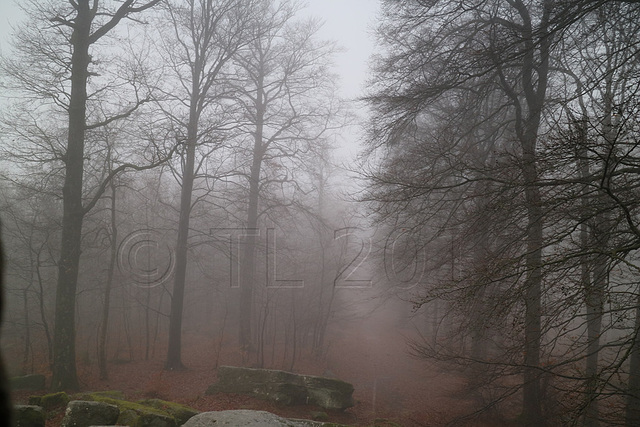 Weißenberg im strömenden Regen
