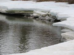 Receding Ice of April