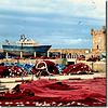 """""""Port d'Essaouira"""" - Maroc"""
