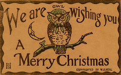 We Are Owl Wishing You a Merry Christmas Even If You Don't Give a Hoot