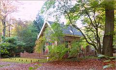 Fairy taile House...