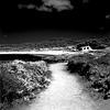 Shoreline Path