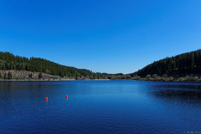 am Schluchsee - Blick nach Seebrugg (© Buelipix)