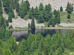 ...le Lac Noir à Seyne les Alpes...