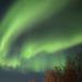 Northern Lights, Malangen Resort