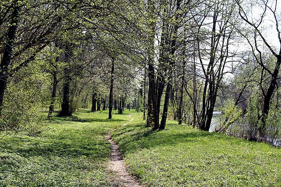 Ostersonntag - Spaziergang entlang der Argen