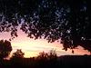 Au petit matin .Soleil levant sur le Luberon