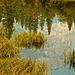 Mirror Lake 02