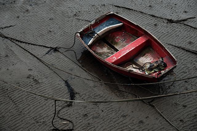 Lyme Regis XPro2 Seafront 6
