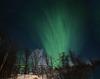 Northern Lights, Malangen Resort, HFF