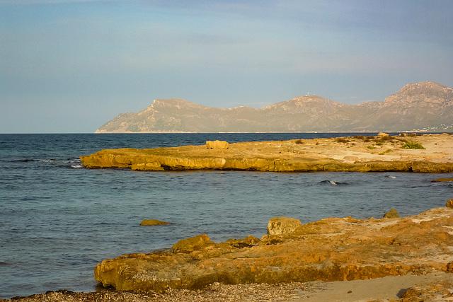 Mallorca - Can Picafort P1000524