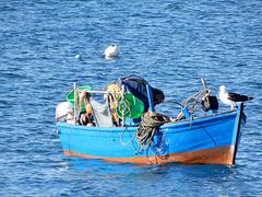 le pêcheur et le goeland,