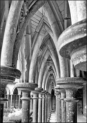 Mont-Saint-Michel (50) 26 août 2008. Le cloître de l'abbaye.