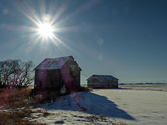 Old barns in late afternoon sun