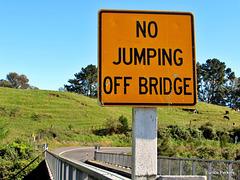 No Jumping Sign.