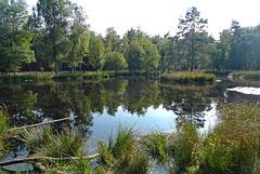Nederland - Heerde, Pluizenmeer