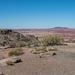 The painted desert14