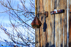 Lamp at the old shed