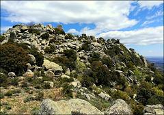 Sierra de La Cabrera, for Pam.