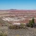 The painted desert16
