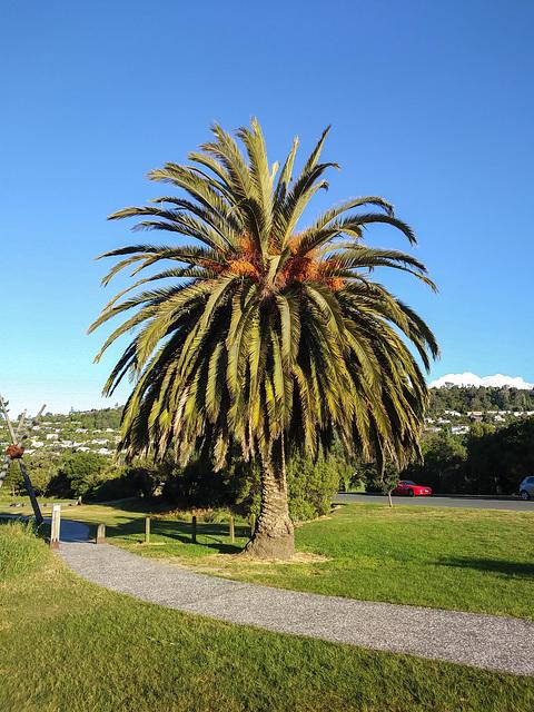 Neuseeland - Nelson
