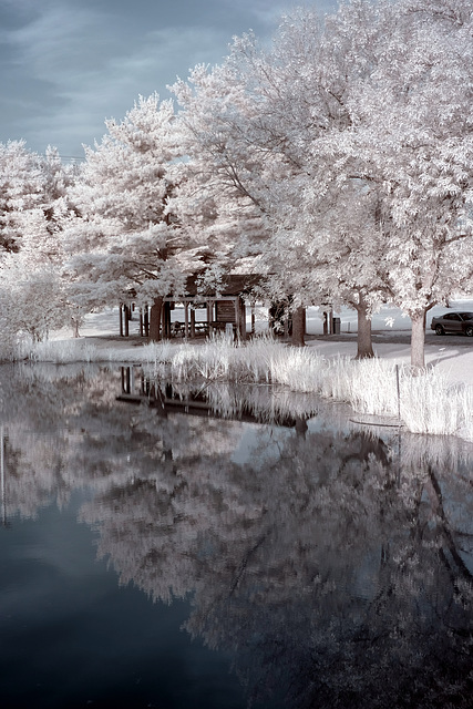 Independence Day in infrared