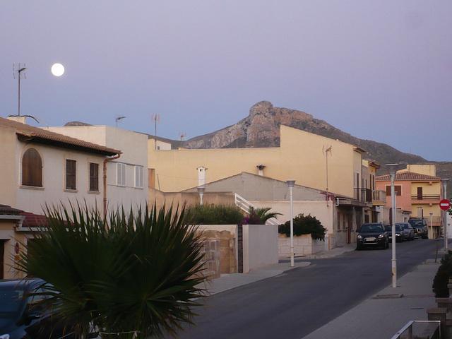 Mallorca - Son Serra de Marina P1000492