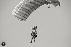 Airborne forces - Paratrooper