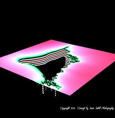 The Black Hole  fractal