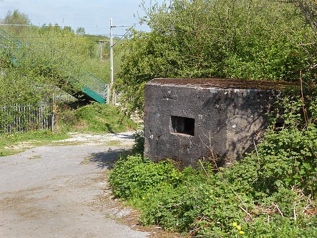 Danes Moss pillbox
