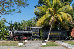 Pedro Pablo - steam under palms