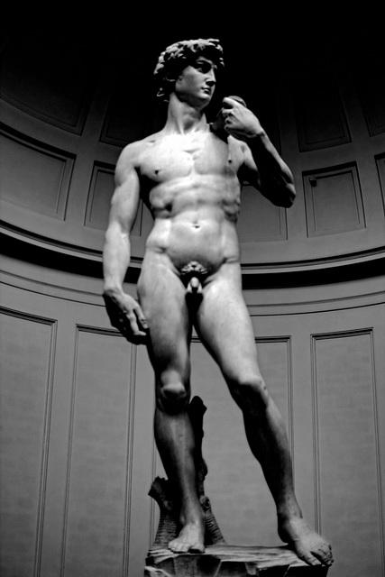 Florence Galleria dell Accademia 2 David XPro1 mono