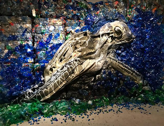 IMG 1168 Street art avec des déchets