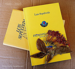 inolvidable / unforgettable