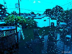 Jour de pluie….