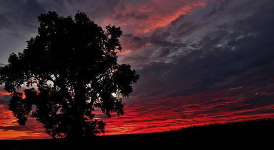 at twilight...