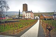 Rudesheim ~ Germany