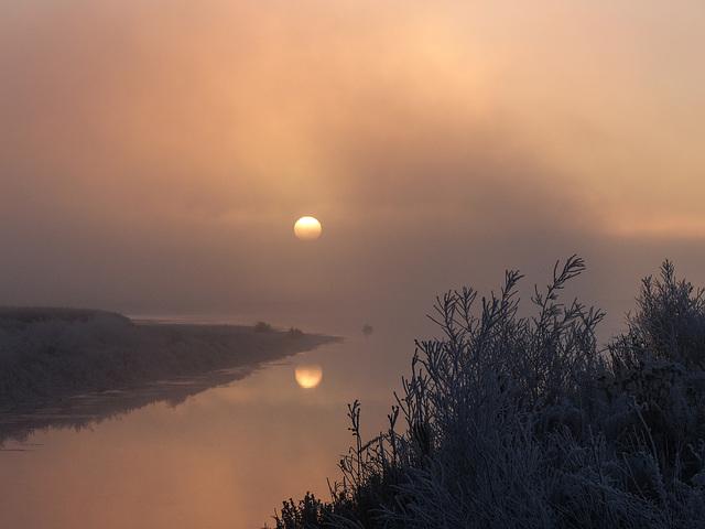 Reflection through the fog