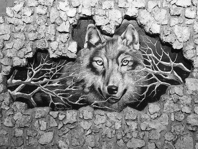 le loup est bloqué dans Paris