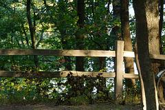 Fence Shadowplay